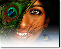 Click Here Enlarge